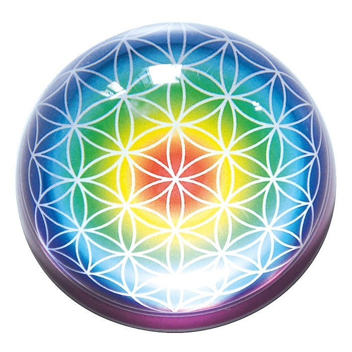 Energy Dome Flower Of Life